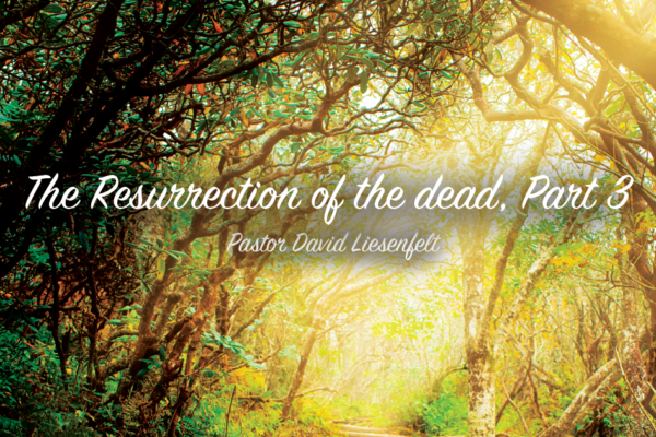 The Resurrection of the Dead, Part 3