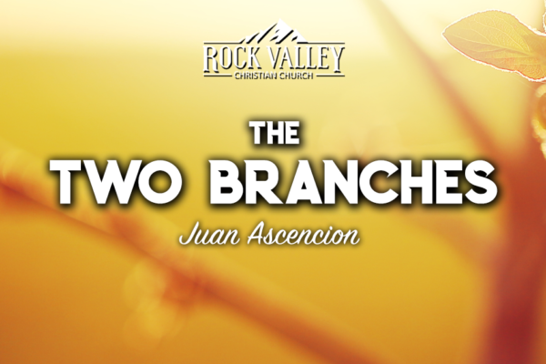 The Two Branches